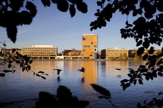 Konstnärligt Campus. En del av Umeå Universitet med från vänster: Konsthögskolan, Bildmuseet och Arkitekthögskolan. Friköpt för Umeå universitet t.o.m. 2014-11-06